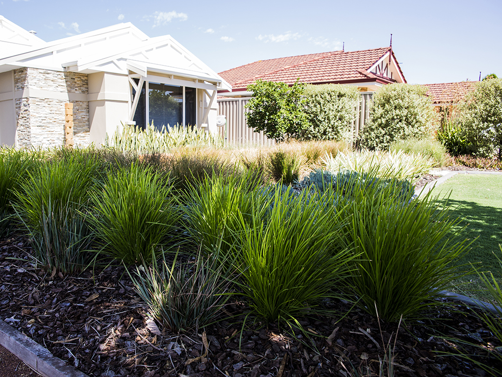 Waterwise Verge Guidelines